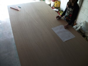 Great helper transfering the plans to the marine ply